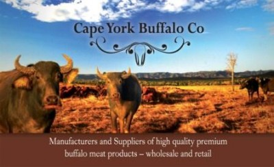 cape-york-buffalo